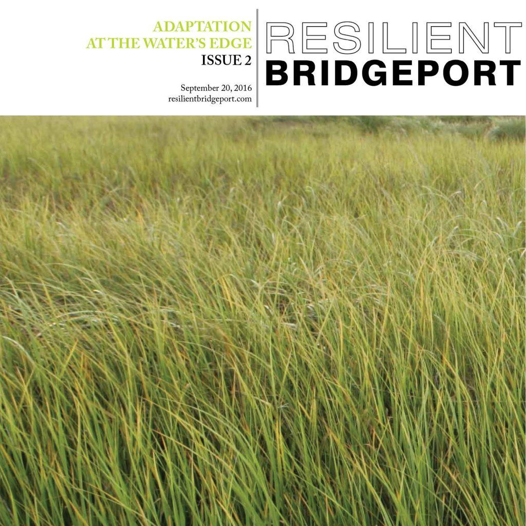 broadsheet-issue-02